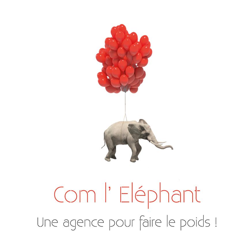 Réseau LDE, réseau d'entrepreneurs com l'elephant logo